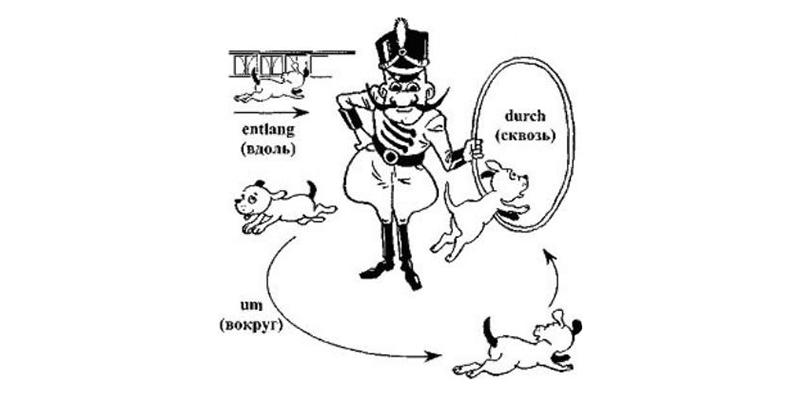 Цирковое шоу с собачками, рисунок