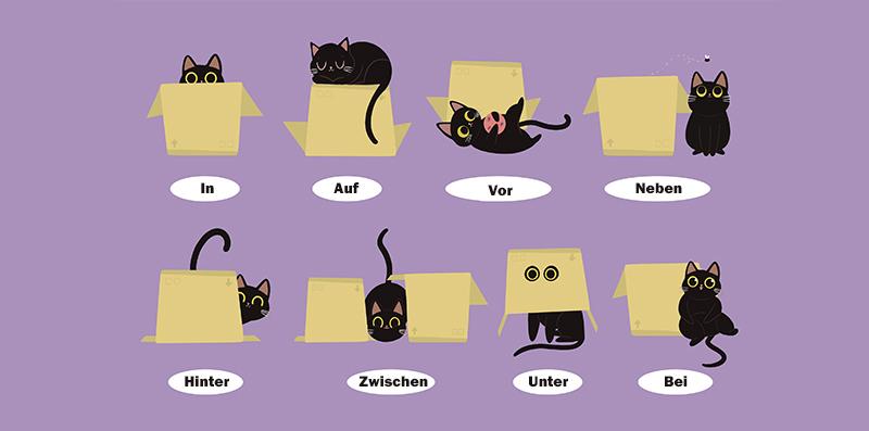 Немецкие предлоги в картинках