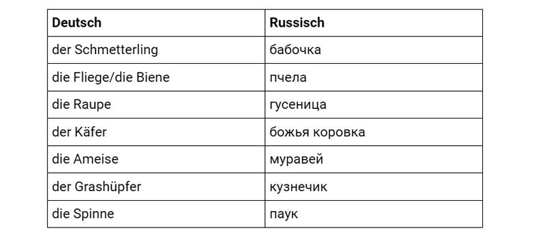 Насекомые на немецком, таблица
